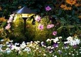 Устройство освещения сада